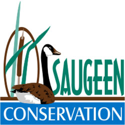Saugeen Conservation Parks